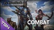 Elder Scrolls Online : Combat Overview