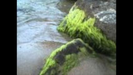 Черно Море 2011 (black sea 2011)