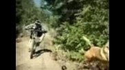 able cam extreme downhill mountain bike