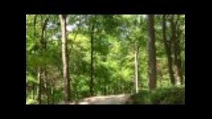Dirt Jumping Bedwyn Woods - Dickie Jones and Ryan Taylor Spring edit