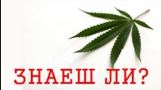 #156. Легализацията Идва! Готови Ли Сте!?