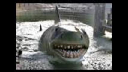 Универсал Студио акула напада хората!