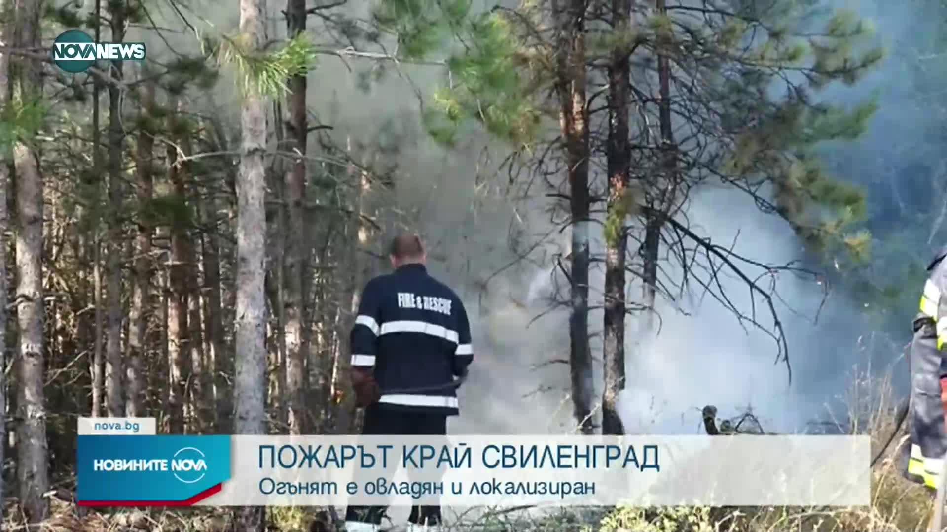 Пожарът в Сакар планина е локализиран и овладян