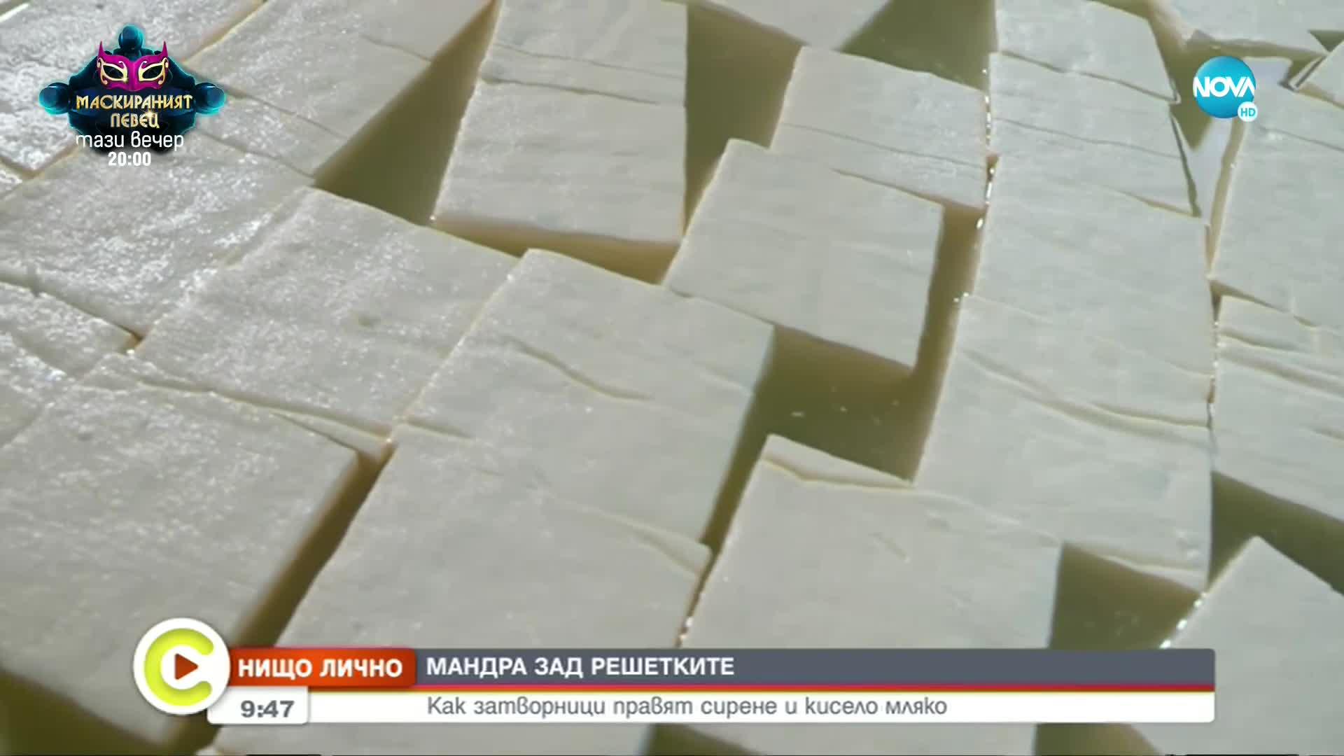 """""""НИЩО ЛИЧНО"""": Затворници правят сирене и мляко у нас"""