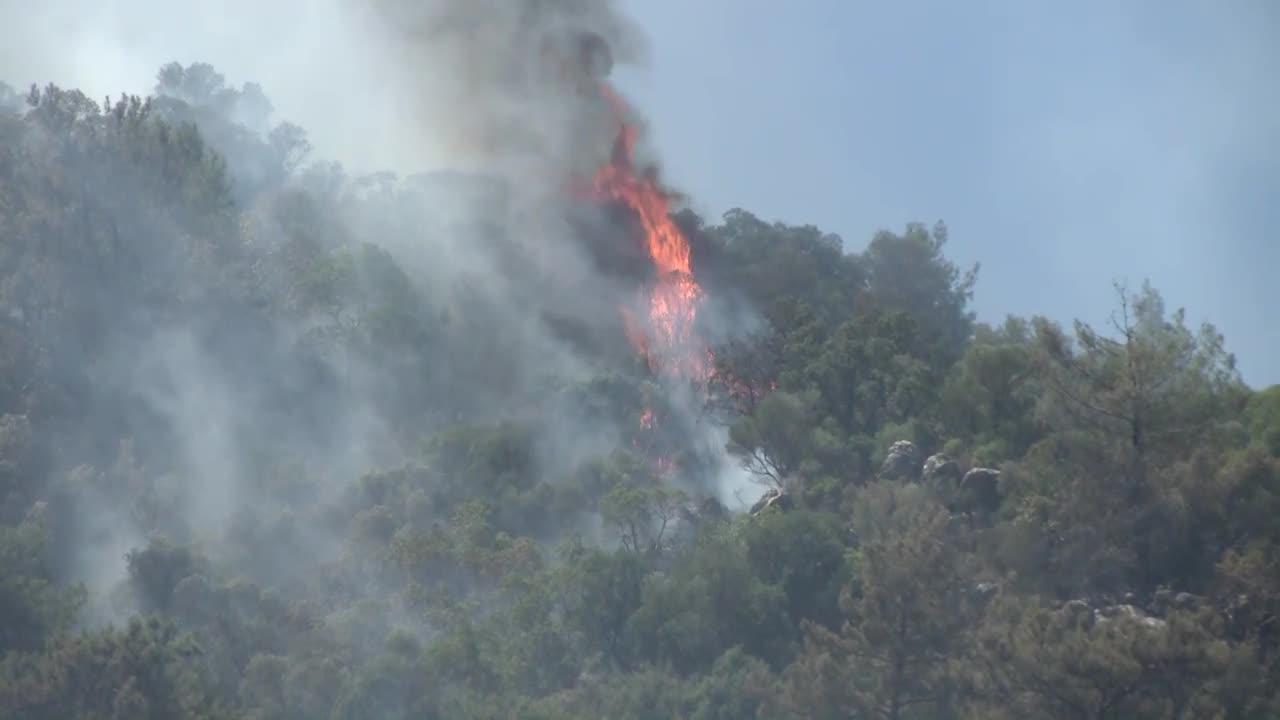 Turkey: Wildfires continue to spread across Turkish coast