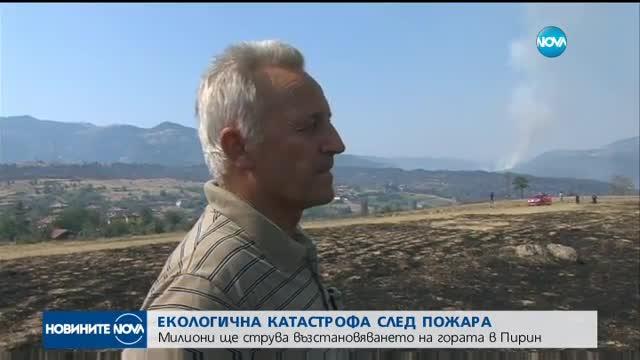 Екологична катастрофа в Пирин след пожара
