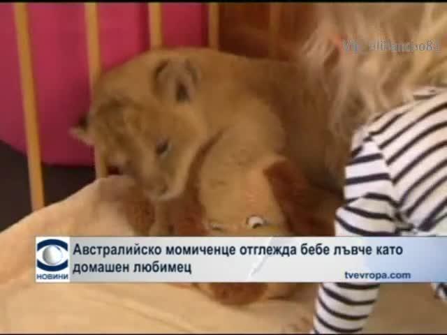 Дете отглежда бебе Лъвче