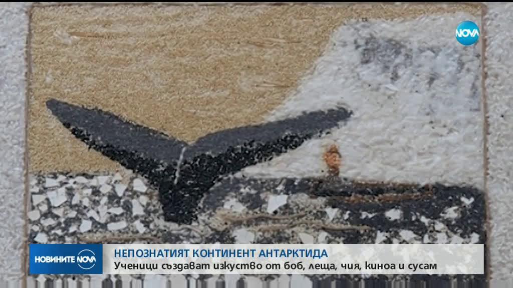 Ученици правят мозаечни пана, за да насочат вниманието към опазването на Антарктида
