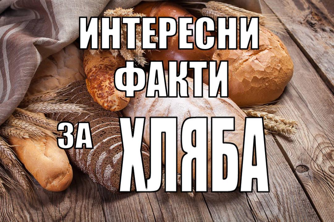 Интересни факти за хляба