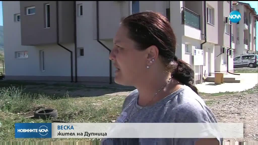 Бездомно куче нахапа 6-годишно дете в Дупница
