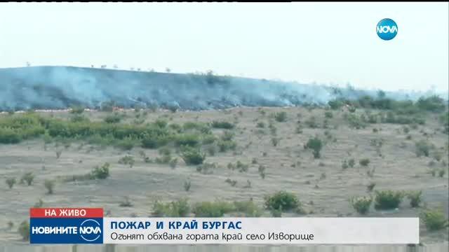 Стотици декари гора отново пламнаха край Изворище