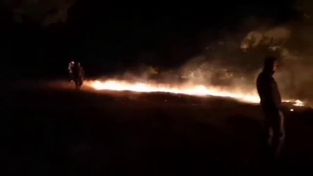Пожар изпепели над 1000 декара край границата с Македония