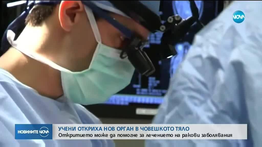 Учени откриха нов орган в човешкото тяло