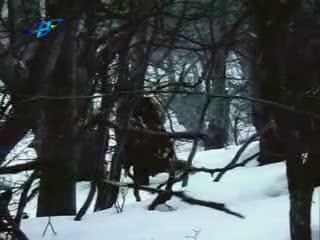 Хайка за вълци епизод2
