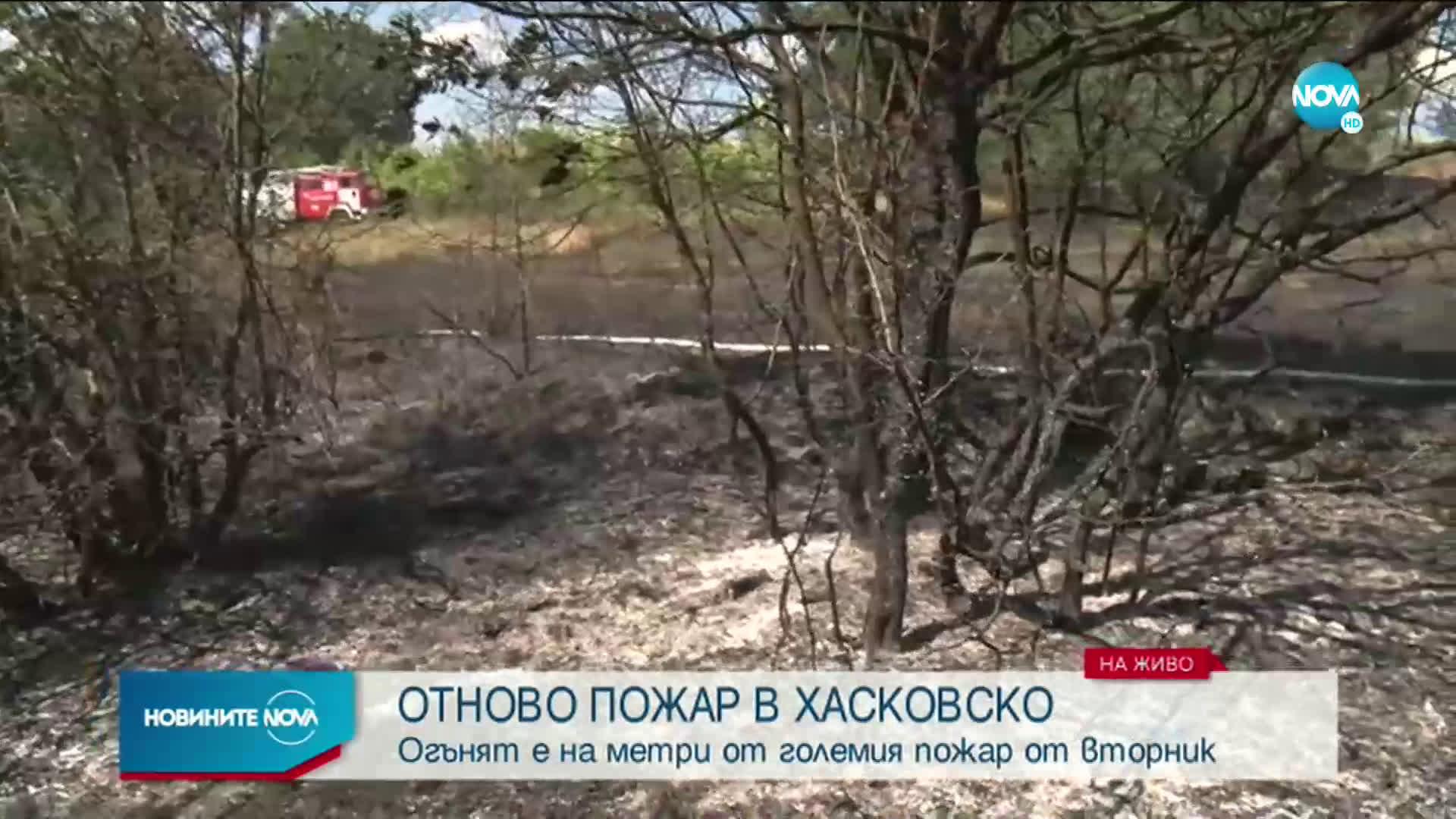 Нов пожар избухна в Хасковско