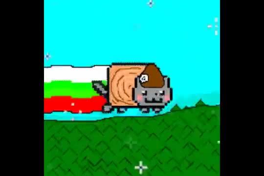 Как би се казвала тази котка на български?
