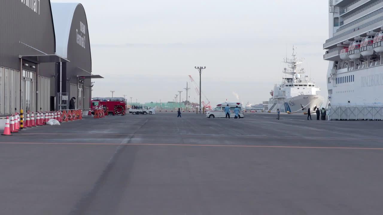 Japan: Coronavirus cases on Diamond Princess cruise ship rise to 61