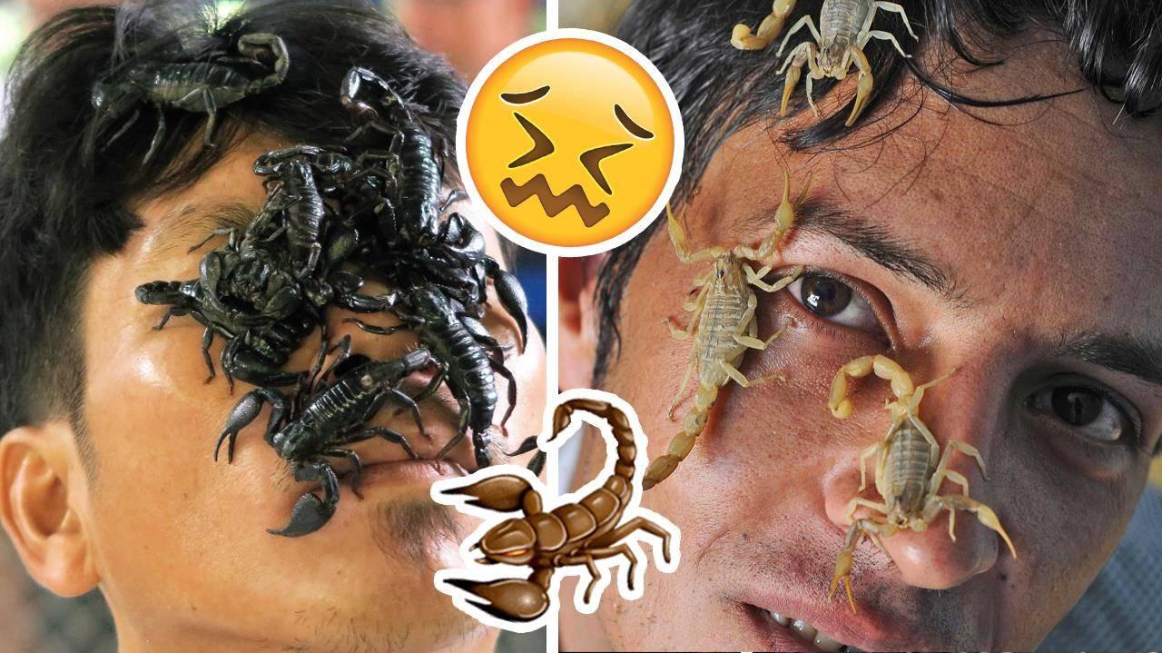 WTF?! Скорпиони ходят по лица на хора заради странен ритуал!