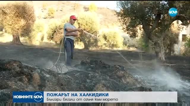 ПОЖАРЪТ НА ХАЛКИДИКИ: Българи бягали от огъня към морето