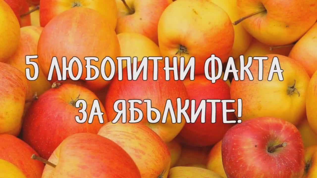 5 любопитни факта за ябълките