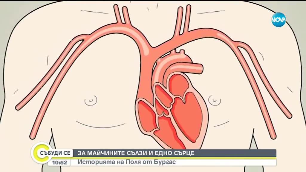 МАЙЧИНИ СЪЛЗИ: Какво се случва когато сърцето излезе от ритъм?