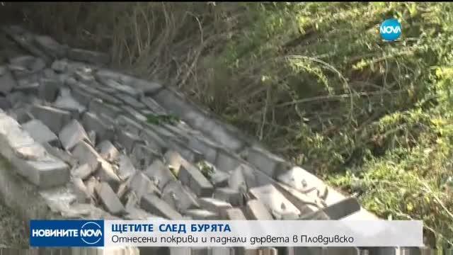 ЩЕТИТЕ СЛЕД БУРЯТА: Отнесени покриви и паднали дървета в Пловдивско