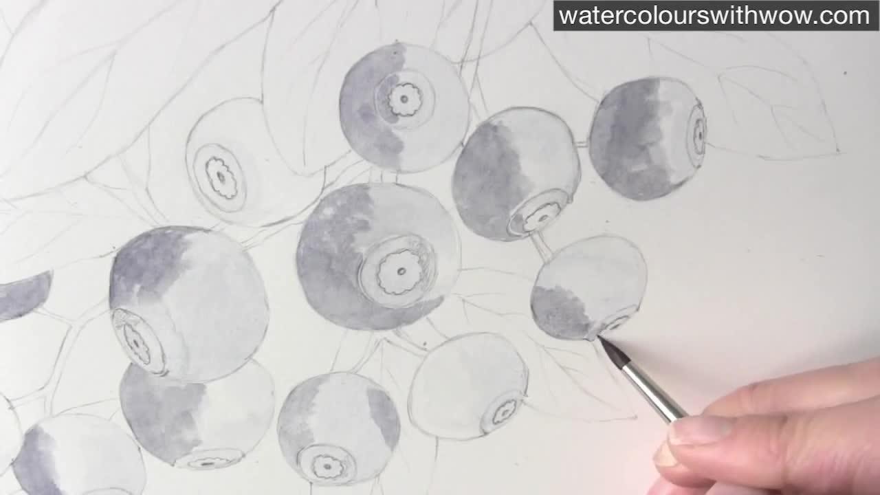 Как да нарисуваме боровинки с 3 D ефект използвайки акварел /урок от Anna Mason/