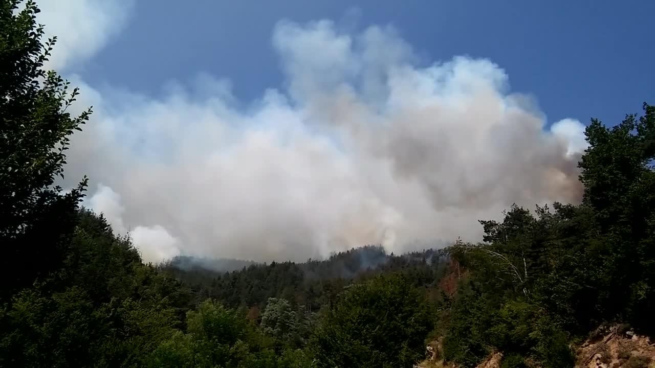 Пожар в Ардино