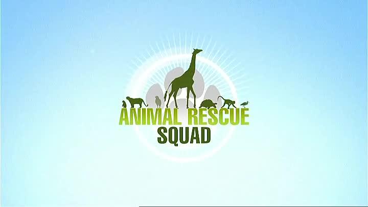 Зооспасители (Animal Rescue Squad) S02E03