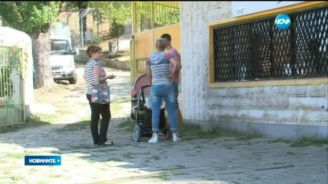 Вълк избяга от зоопарка в Благоевград