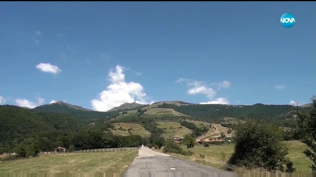 Диво прасе нападна и рани турист в Стара планина