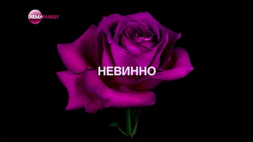 """""""Пепел от рози"""" от 12 юни в 18.00 ч. по DIEMA FAMILY"""