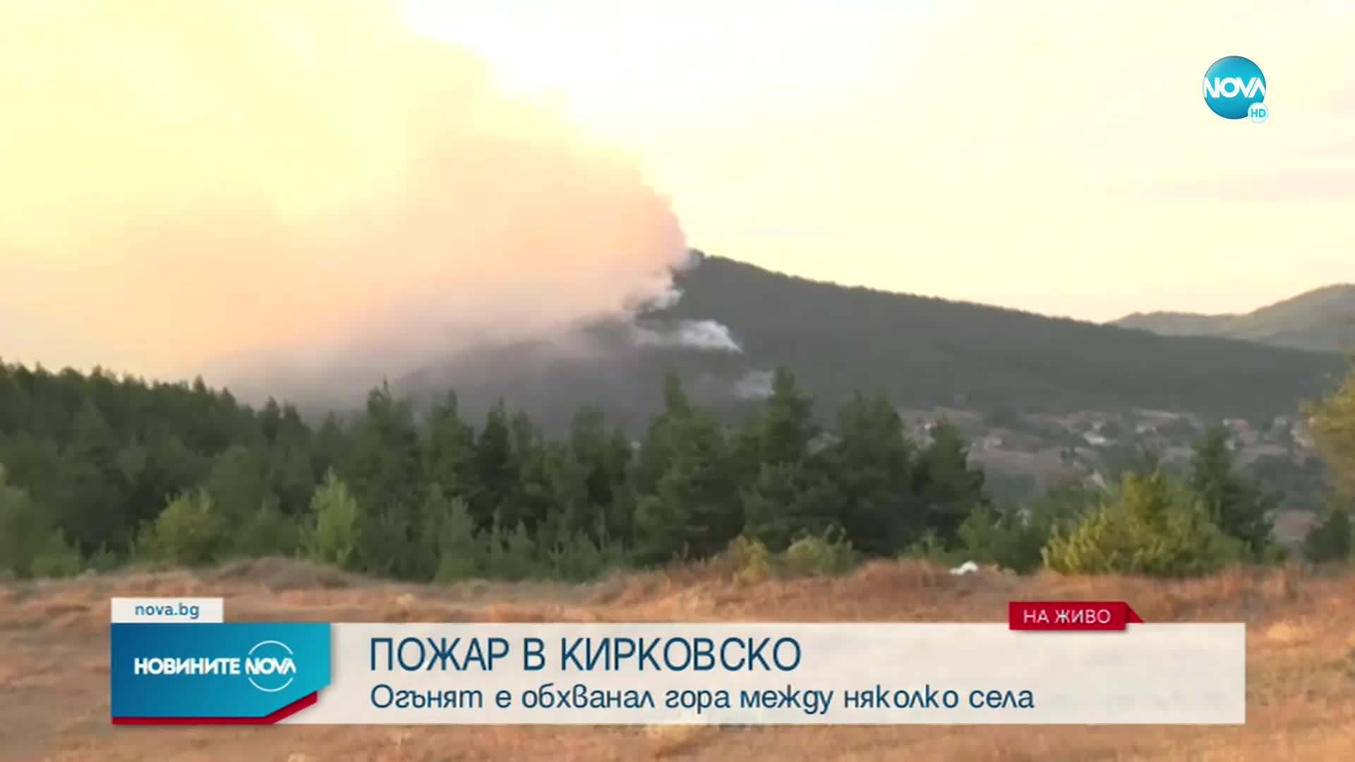 Горски пожар бушува край Кирково