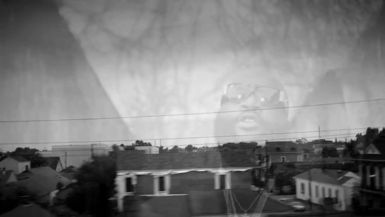 чёрное море бетта фото