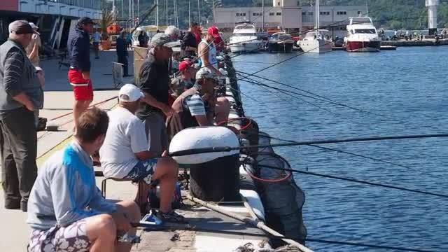 Резултат с изображение за любителски риболов варна