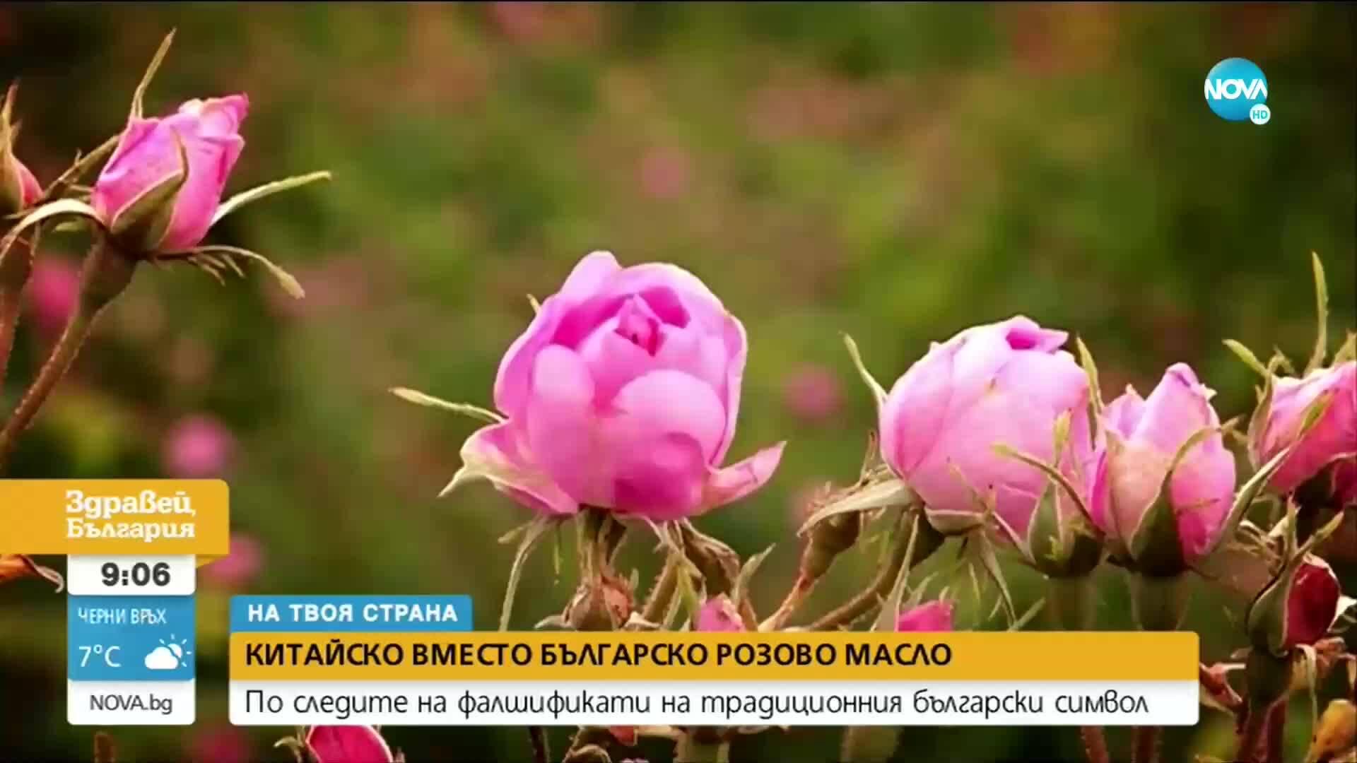 """""""На твоя страна"""": Китайско вместо българско розово масло"""
