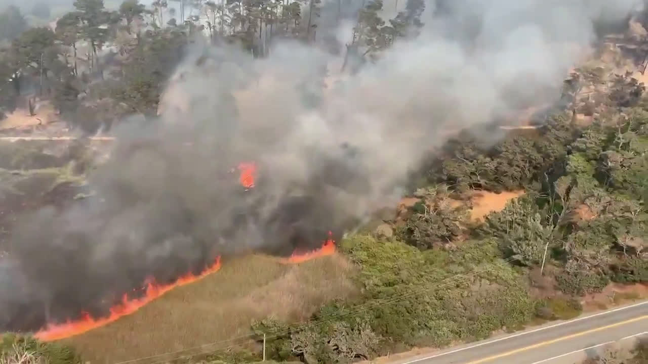 USA: Aerial footage captures scale of CZU August Lightning wildfire complex