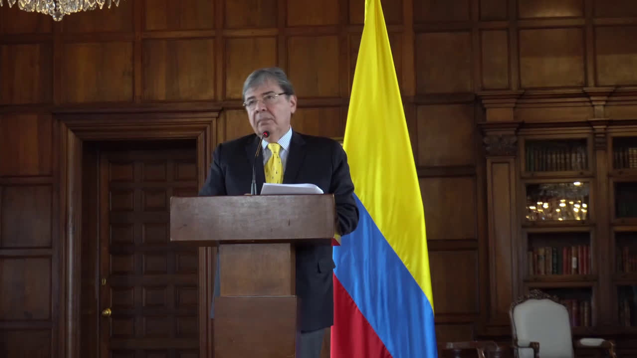 Colombia: Military deployed on border to 'guarantee' security in coming days – Colombian FM