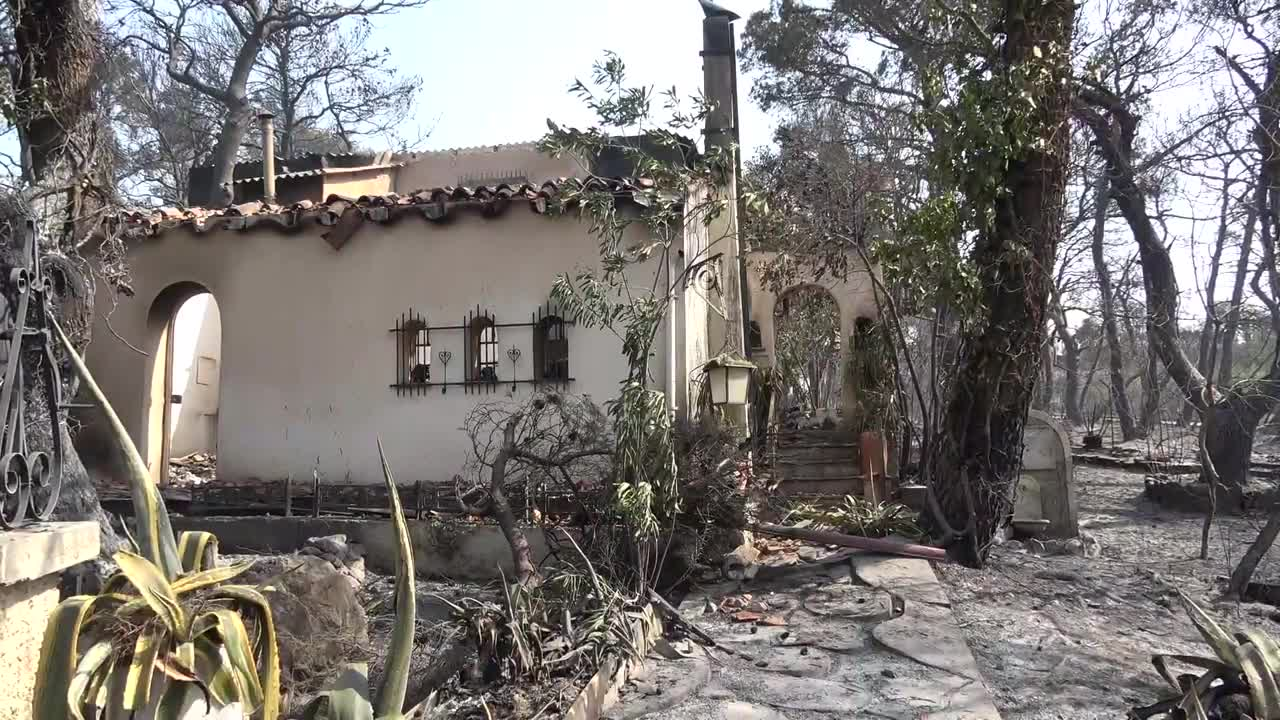 Greece: Houses destroyed by wildfire in Athens suburbs