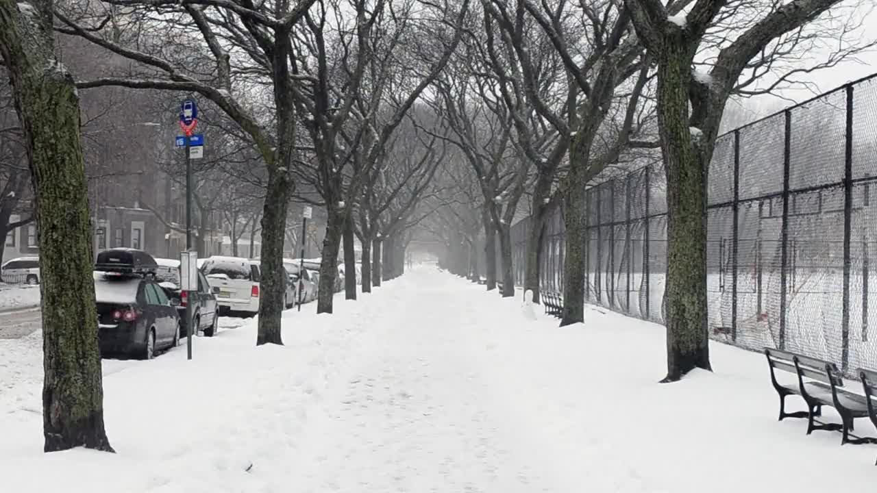 USA: NYC escapes blizzard warning but left with a blanket of snow