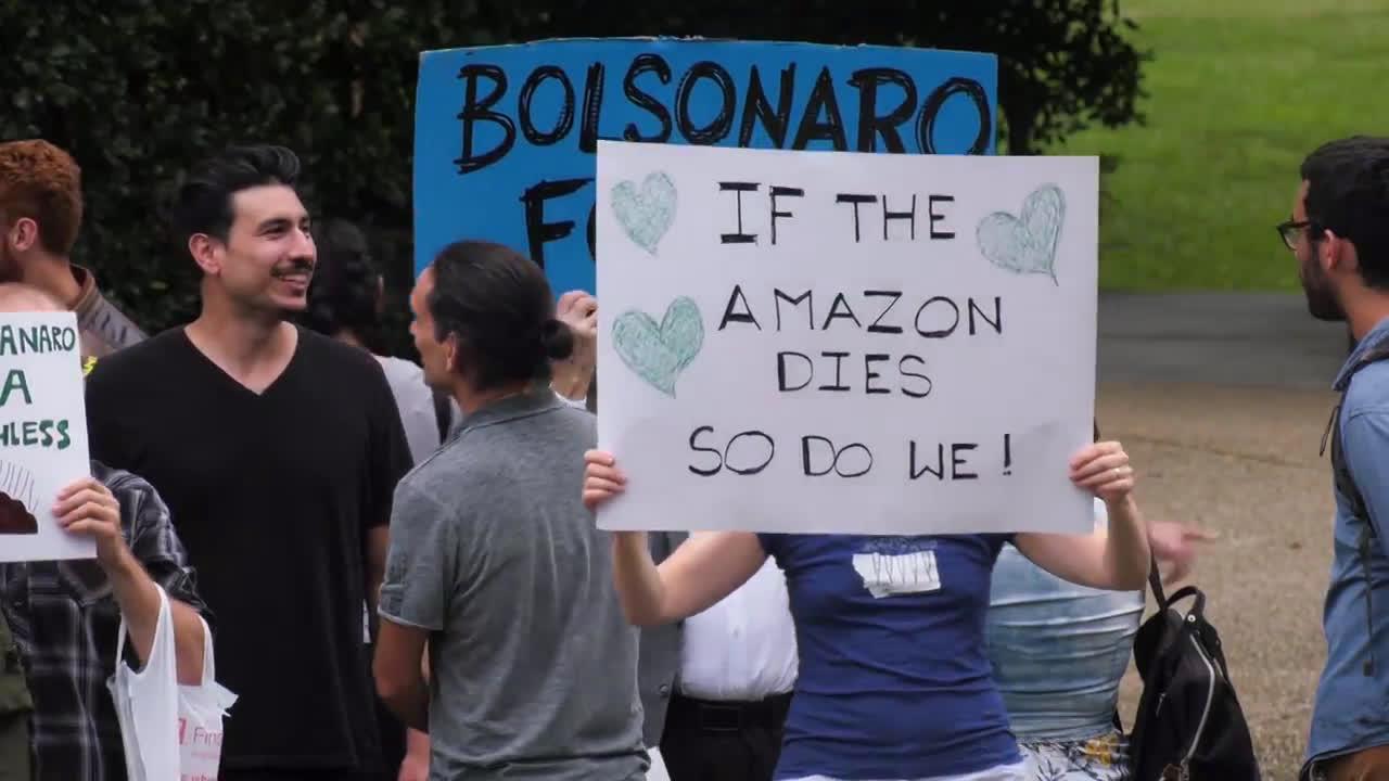 USA: Eco-groups picket Brazilian embassy over Amazon fires