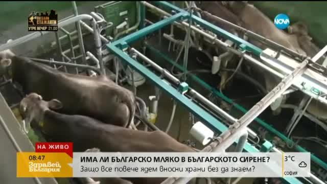 Зоров: Никой не контролира млякото, което влиза от ЕС
