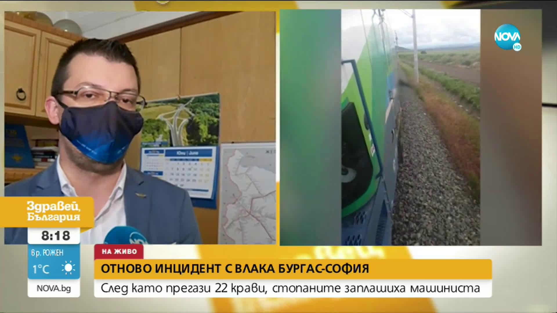 Защо влакът София-Бургас прегази стадо крави?