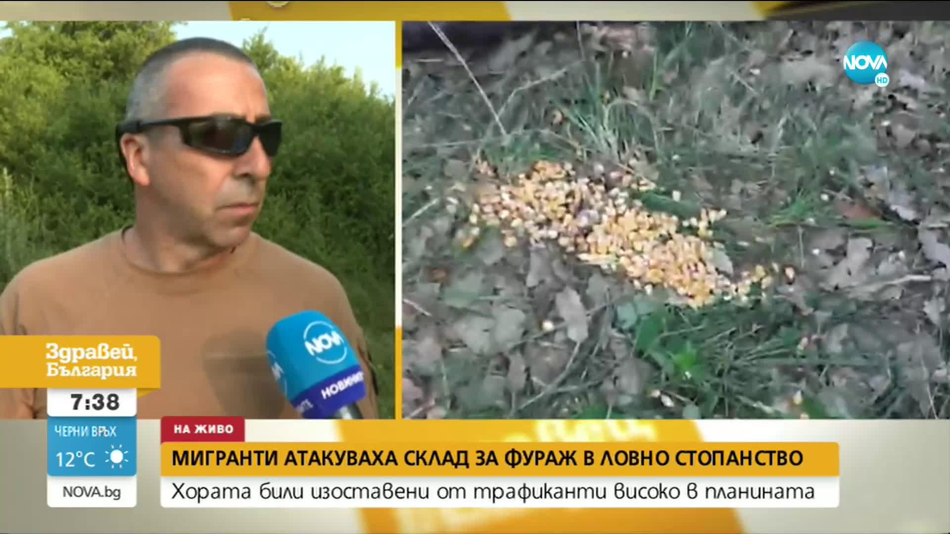 Служител на ловно стопанство намери десетки мигранти в планината над Ихтиман
