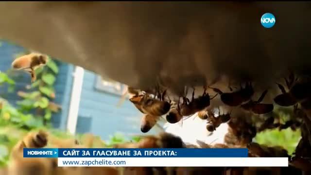 Българско изобретение спасява живота на пчелите