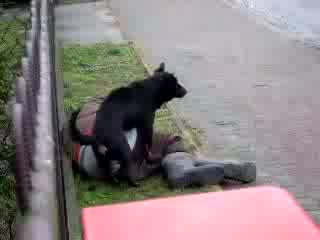 Куче Лупка Пияница