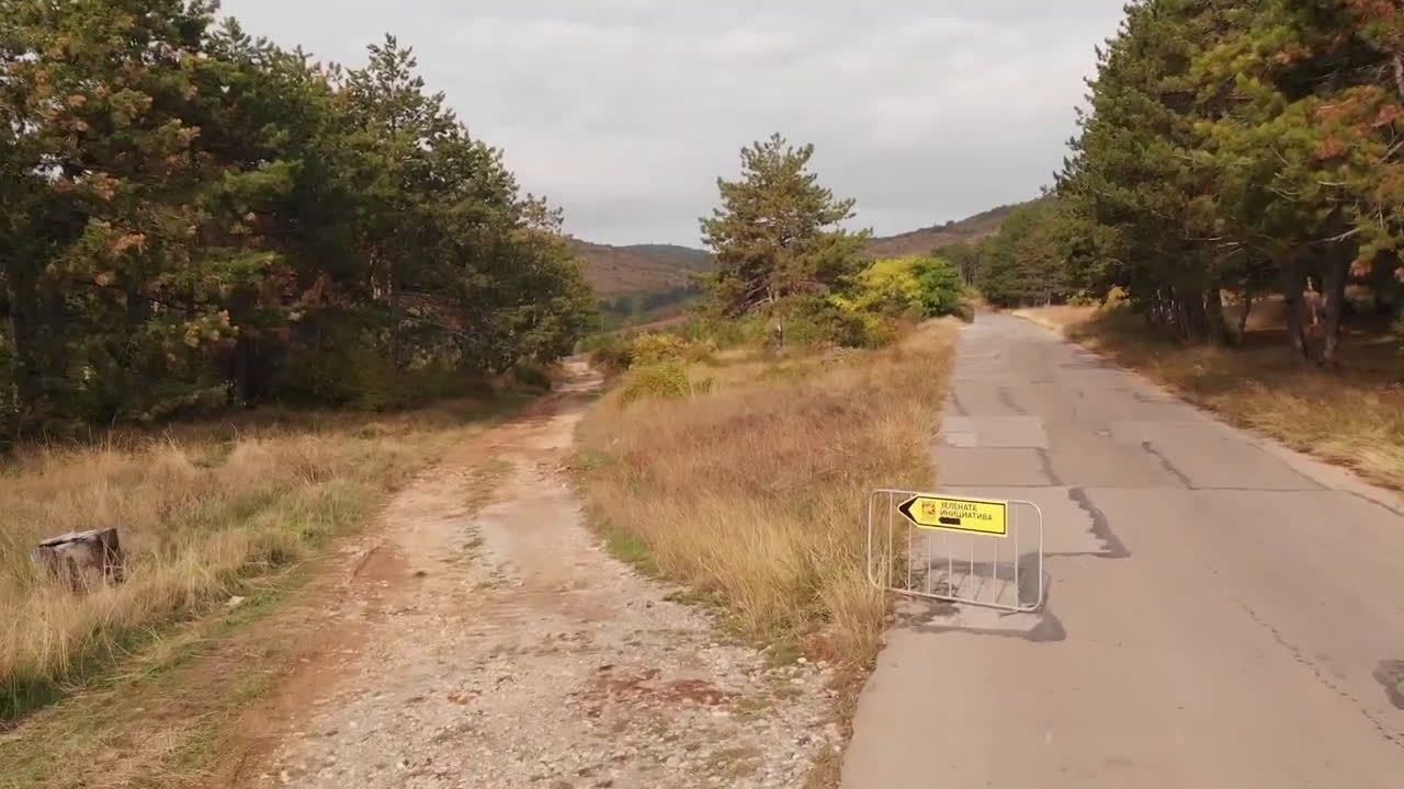 10 000 фиданки от цер ще бъдат залесени в Старозагорско