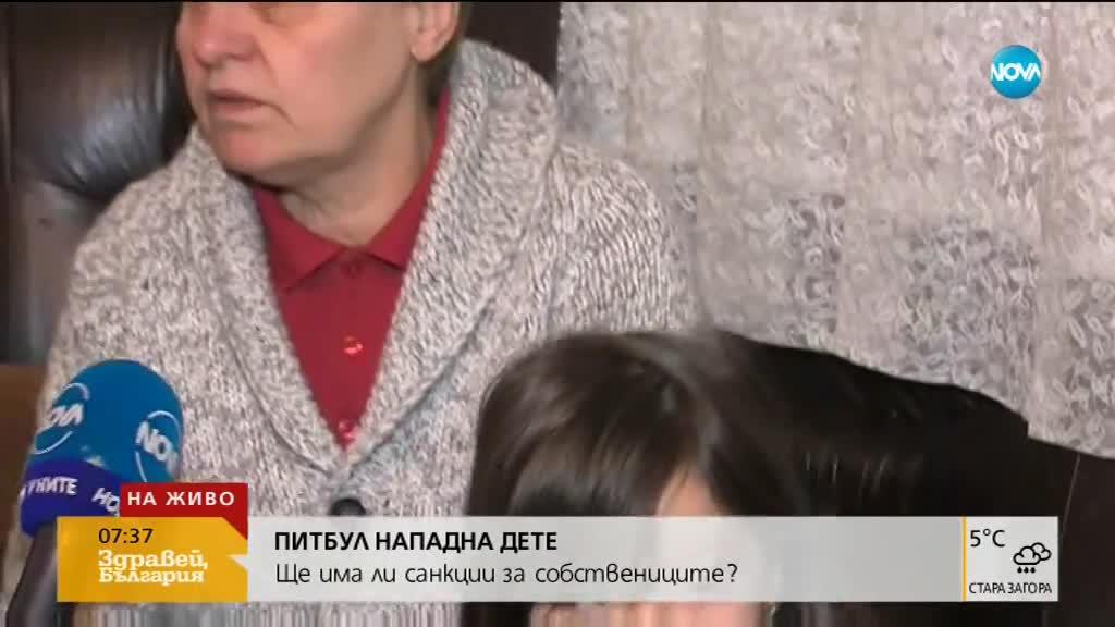 От 100 до 250 лева глоба за собствениците на питбула, нападнал дете в Дупница