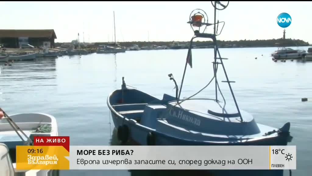 Може ли Черно море да остане без риба?