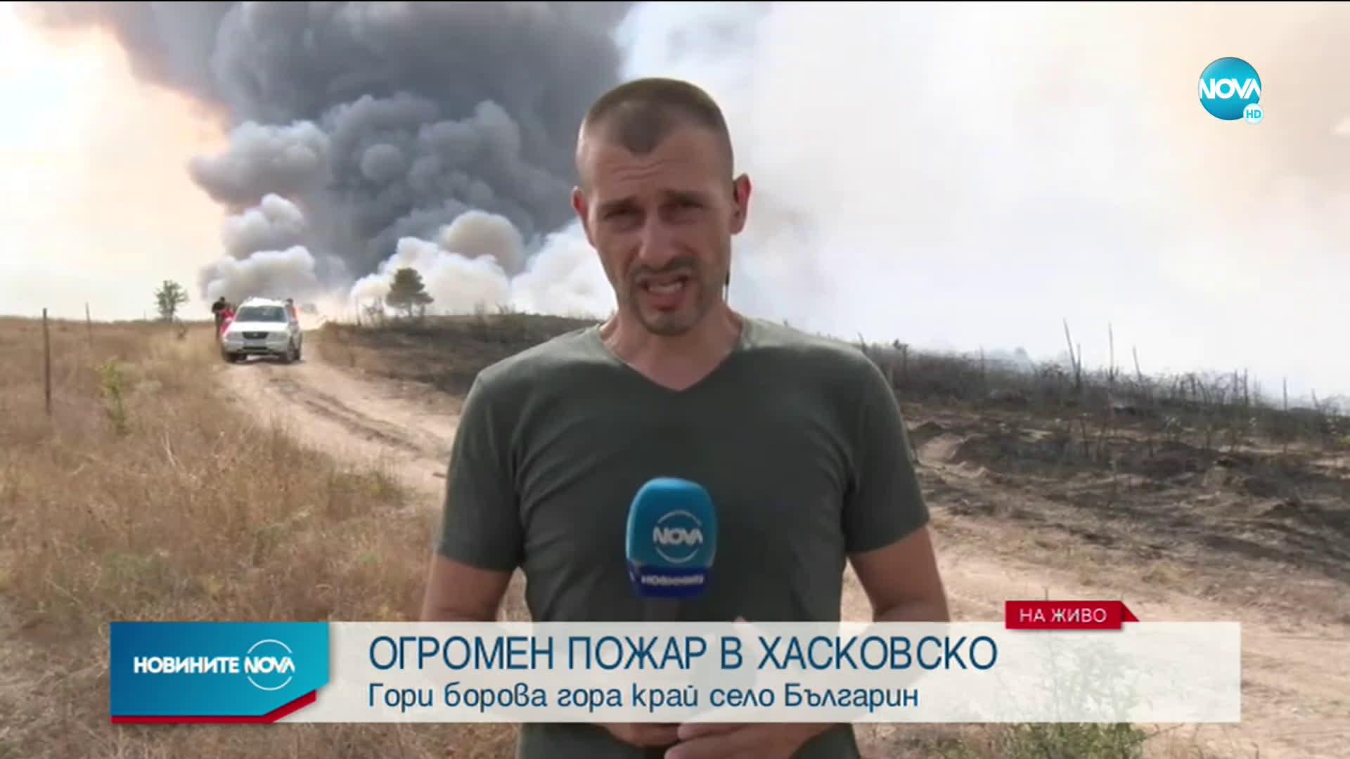 Голям пожар бушува край Харманли